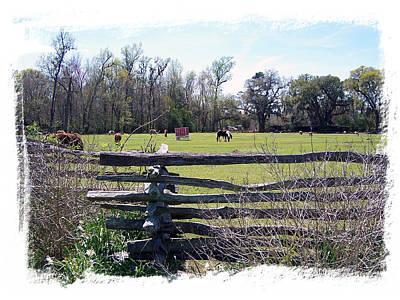Horse Farm Art Print by Ralph  Perdomo