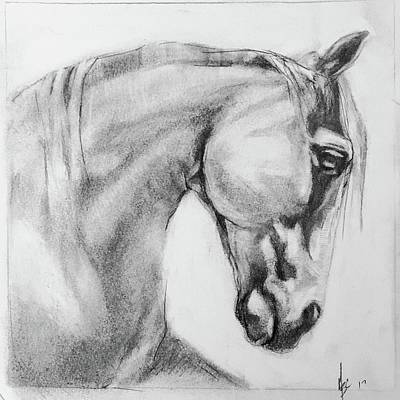 Drawing - Horse Graphite Sketch  by Michele Carter