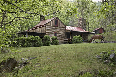 Log Cabins Photograph - Horse Grazing In The Yard Of A Mountain by Greg Dale