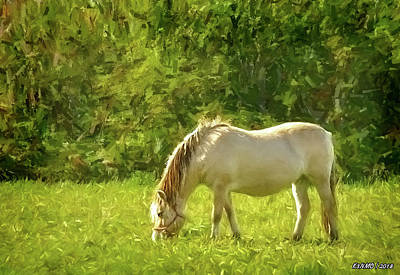 Digital Art - Horse Grazing by Ken Morris