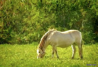 Animals Digital Art - Horse Grazing by Ken Morris