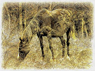 Photograph - Horse Grazing On Pasture 2 by Dorothy Berry-Lound