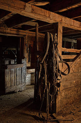 Nighttime Street Photography - Horse Harness 1 by Alana Thrower