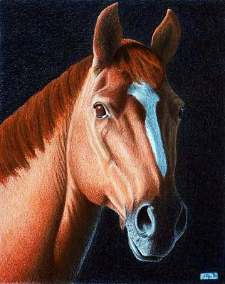 Painting - Horse Head 1 by Joseph Ogle