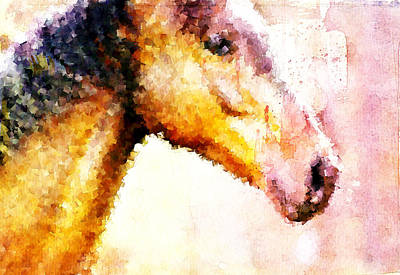 Horse Head Digital Art - Horse Head by Andrea Barbieri