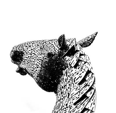 Horse Head. Print by Angela Aird
