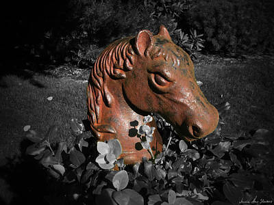 Photograph - Horse Head by Iowan Stone-Flowers
