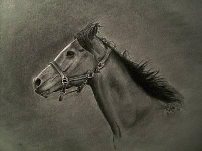 Horse Head Art Print by Michael Trujillo