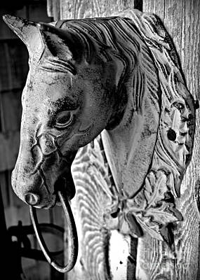 Photograph - Horse Head Monochrome by Chalet Roome-Rigdon