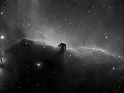 Photograph - Horse Head Nebula Ha by Tony Sarra