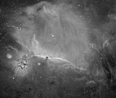 Photograph - Horse Head Wide Field by Tony Sarra