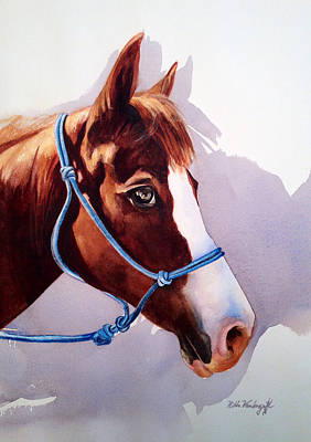 Painting - Horse  by Hilda Vandergriff