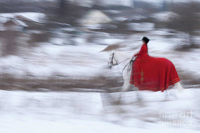 Photograph - Horse Hunt #8025 by Andrey Godyaykin