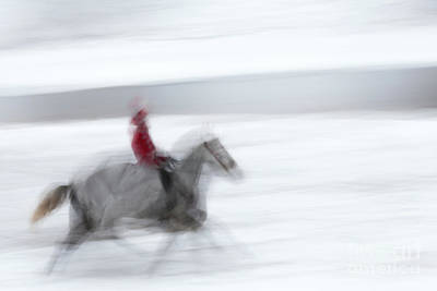 Photograph - Horse Hunt #8125 by Andrey Godyaykin