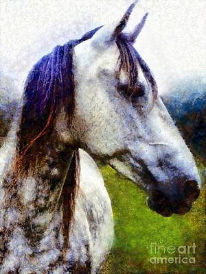 Photograph - Horse I Dream Of You by Janine Riley