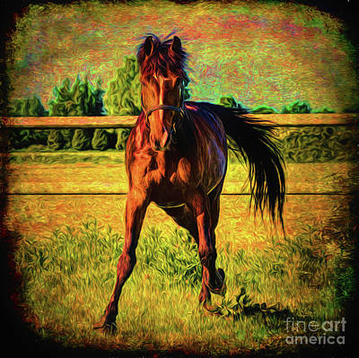 Photograph - Horse II 14018 by Ray Shrewsberry