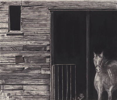 Old Barns Drawing - Horse In Barn by Bryan Baumeister