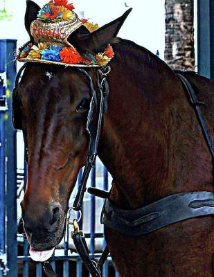 Horse In Hat 2 Print by Janette Legg