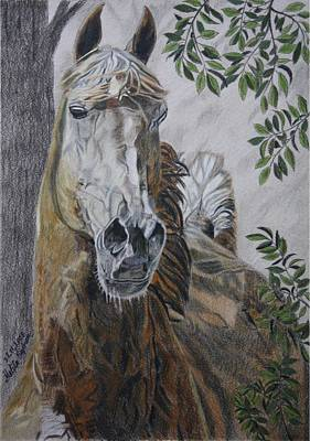 Art Print featuring the drawing Horse by Melita Safran