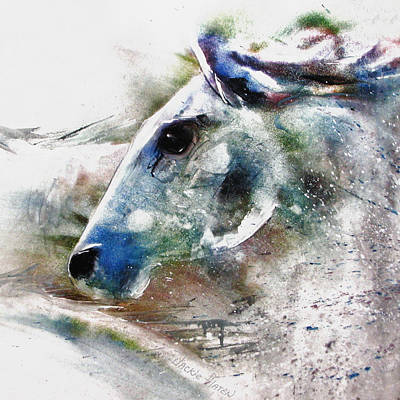 Horse Of Color Art Print