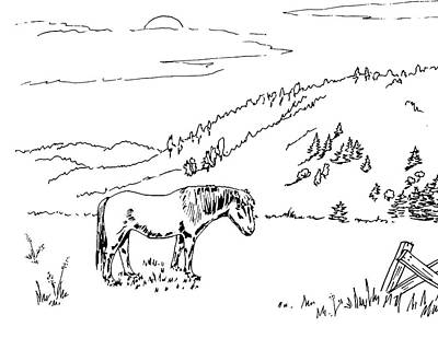 Animals Drawings - Horse On The Ranch Ink Drawing VIII by Irina Sztukowski