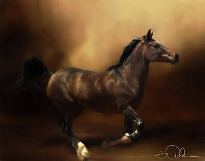 Digital Art - Horse On The Run by Gloria Anderson