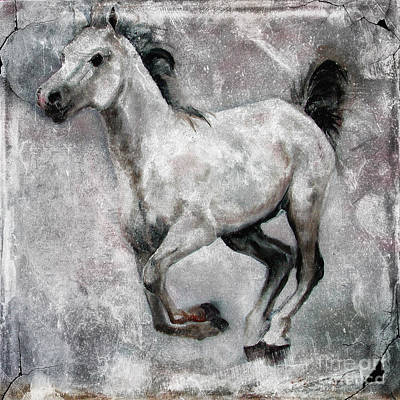 Arabian Mixed Media - Horse Painting Stallion Lipizzaner by Ginette Callaway