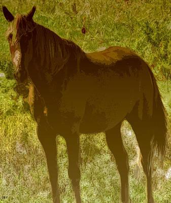 Horse Patch Art Print
