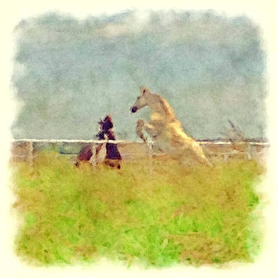 Socialization Digital Art - Horse Play by Vicki Podesta