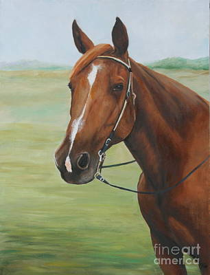 Horse Portrait Art Print by Charlotte Yealey
