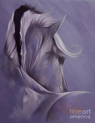 Horse Portrait From Backside  Art Print