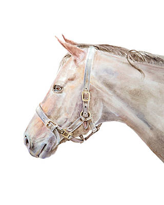Painting - Horse Portrait I by Elizabeth Lock