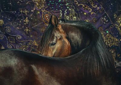 Photograph - Horse Portrait With Carpet by Ekaterina Druz