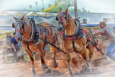 Photograph - Horse Pull At The Fair by Mike Martin