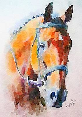 Painting - Horse by Ralph Taylor