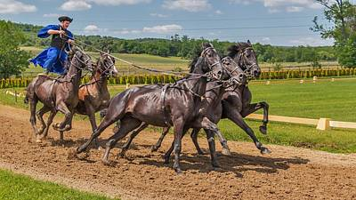 Animals Digital Art - Horse Riding by Maye Loeser