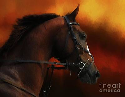 Digital Art - Horse Riding by Suzanne Handel
