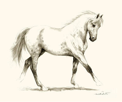Drawing - Horse Sketch 1 by Meridith Martens