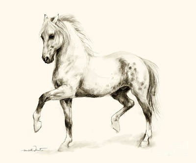 Drawing - Horse Sketch 2 by Meridith Martens