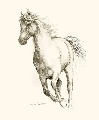 Drawing - Horse Sketch 5 by Meridith Martens