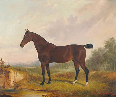 Pond Horses Painting - Horse Standing Beside A Pond by MotionAge Designs