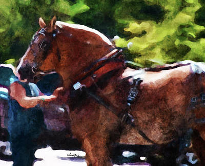 Digital Art - Horse Study #25 by Chamira Young