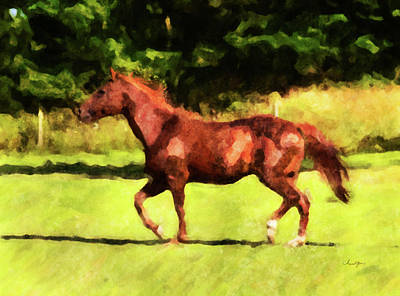 Digital Art - Horse Study #26 by Chamira Young