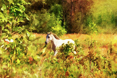 Digital Art - Horse Study #30 by Chamira Young