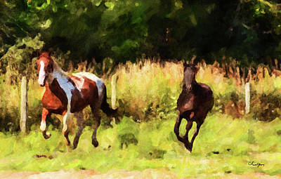 Digital Art - Horse Study #31 by Chamira Young