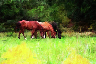 Digital Art - Horse Study #32 by Chamira Young