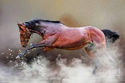 Digital Art - Horse Surf by Suzanne Handel