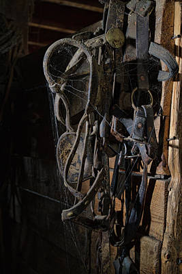 Photograph - Horse Tack 1 by Alana Thrower