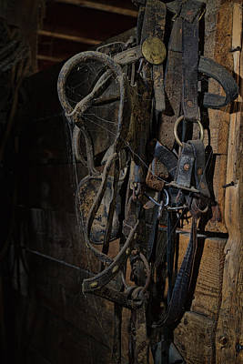 Photograph - Horse Tack by Alana Thrower