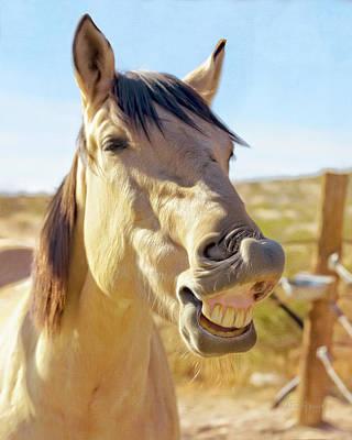 Photograph - Horse Talk #1  by Walter Herrit